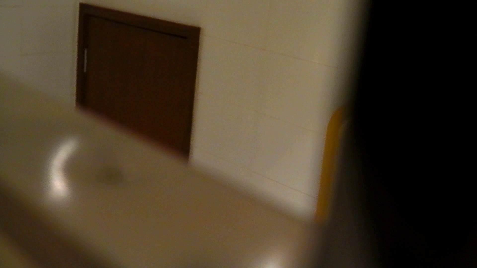 洗寿観音さんの 化粧室は四面楚歌Nol.4 洗面所  55連発 50