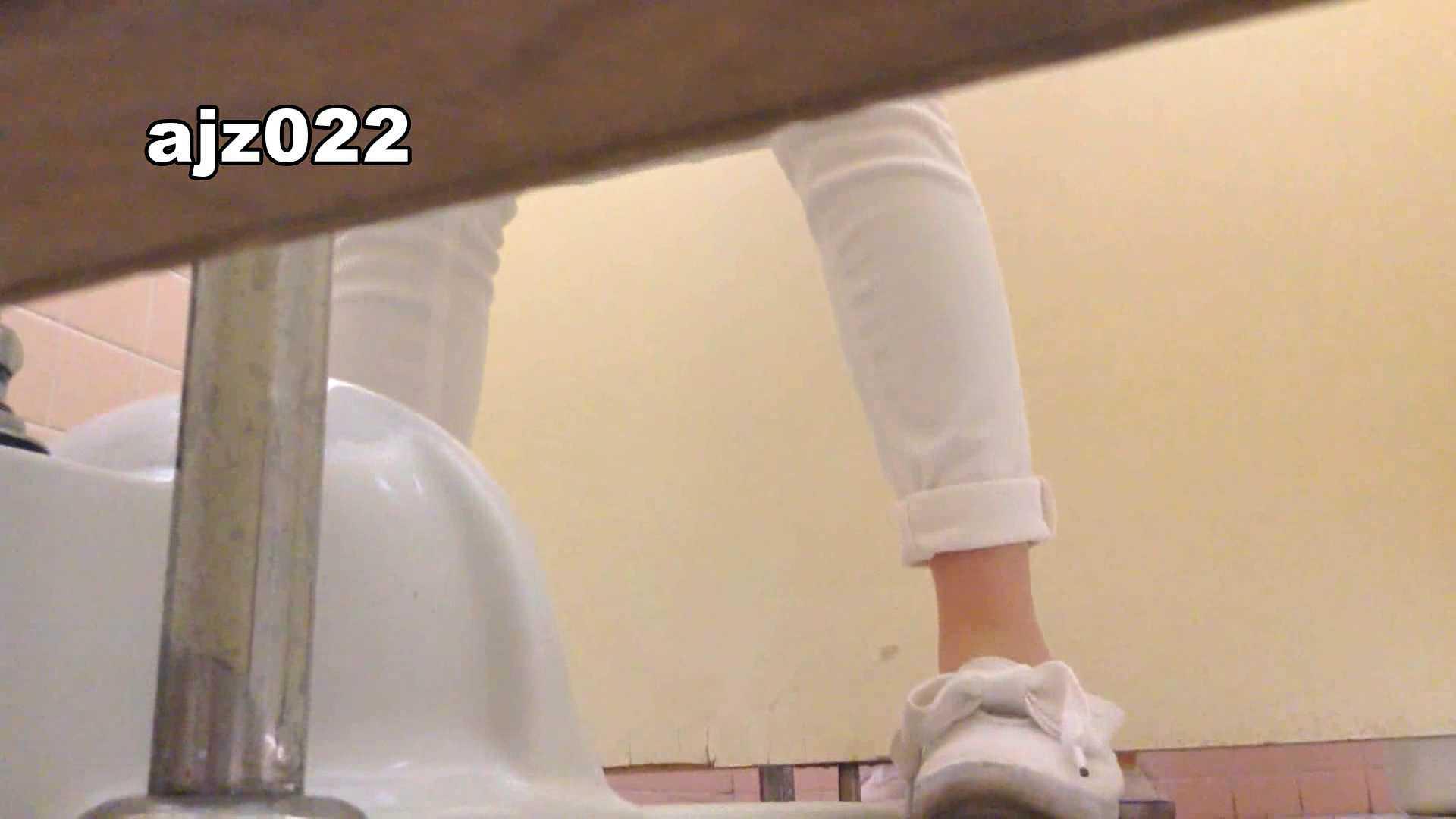 某有名大学女性洗面所 vol.22 排泄 戯れ無修正画像 21連発 11