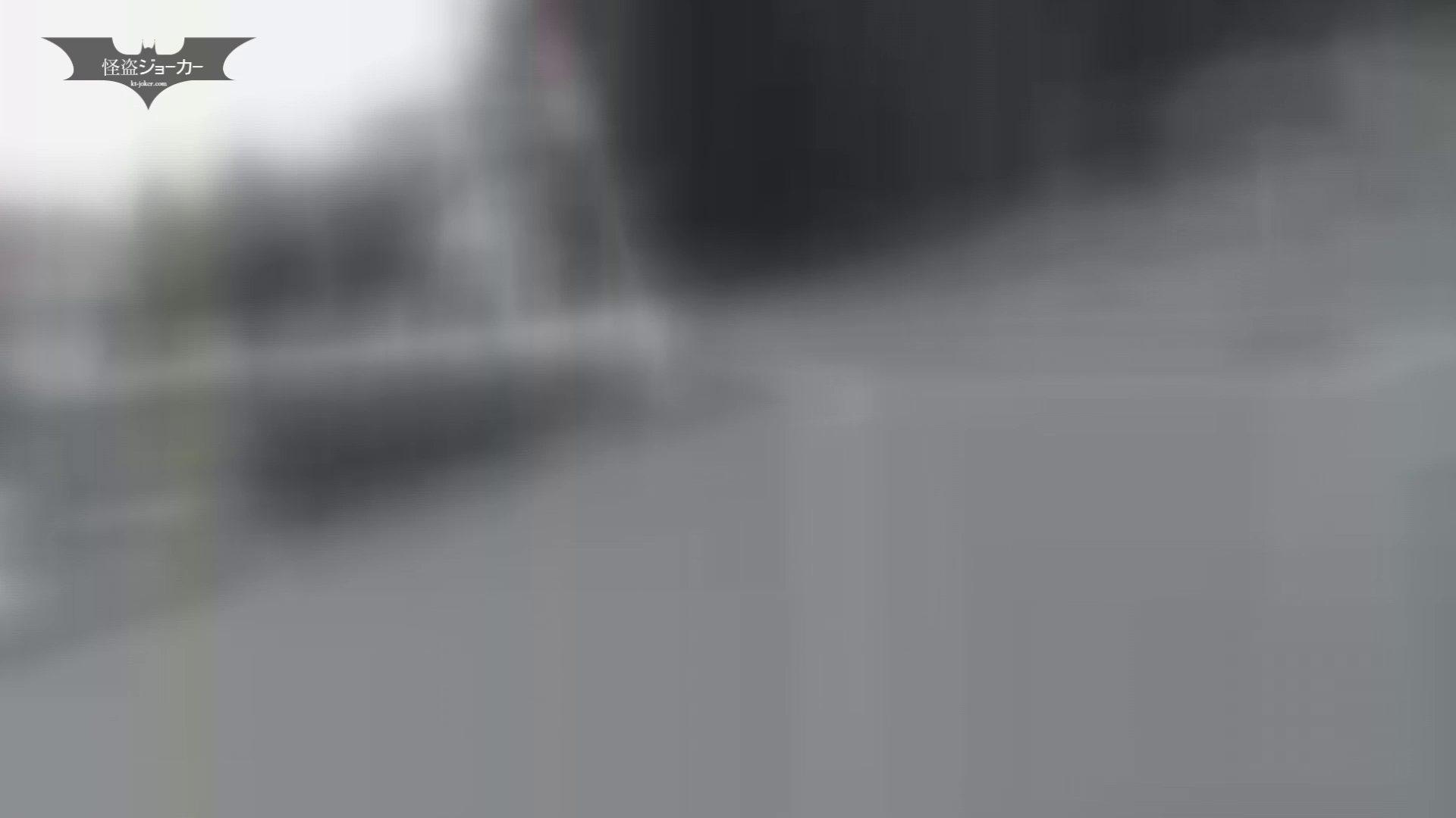 ヒトニアラヅNo.11 問答無用 実行 丸出しマンコ  9連発 5