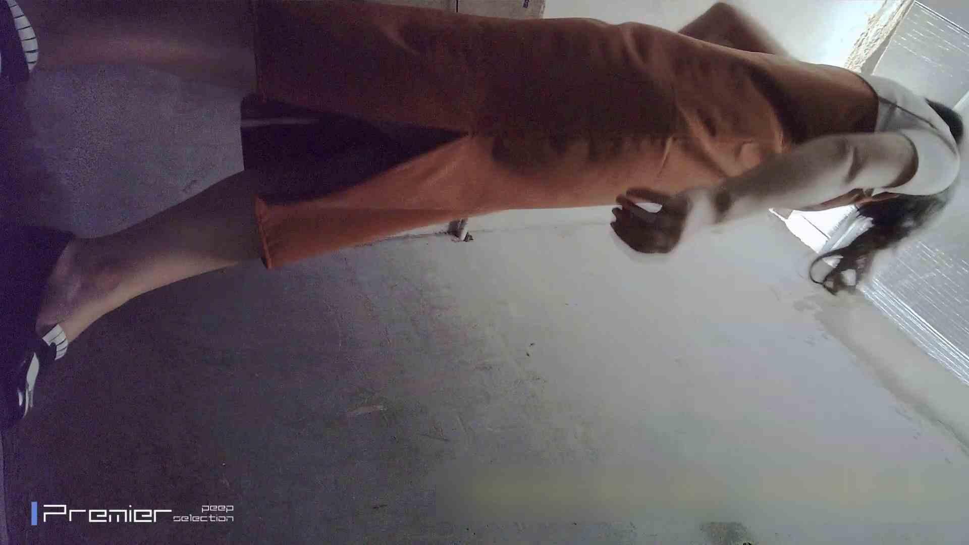 トイレシーンを密着盗撮!! 美女の痴態に密着!Vol.22 エッチすぎる美女 オメコ動画キャプチャ 103連発 12