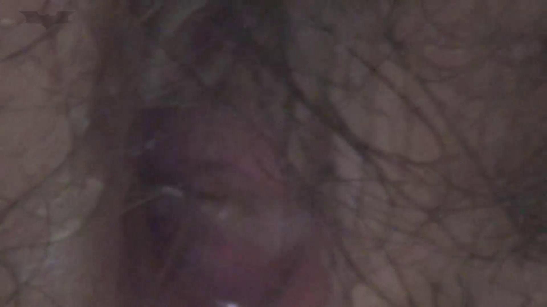 JD盗撮 美女の洗面所の秘密 Vol.38 洗面所 オマンコ動画キャプチャ 63連発 34