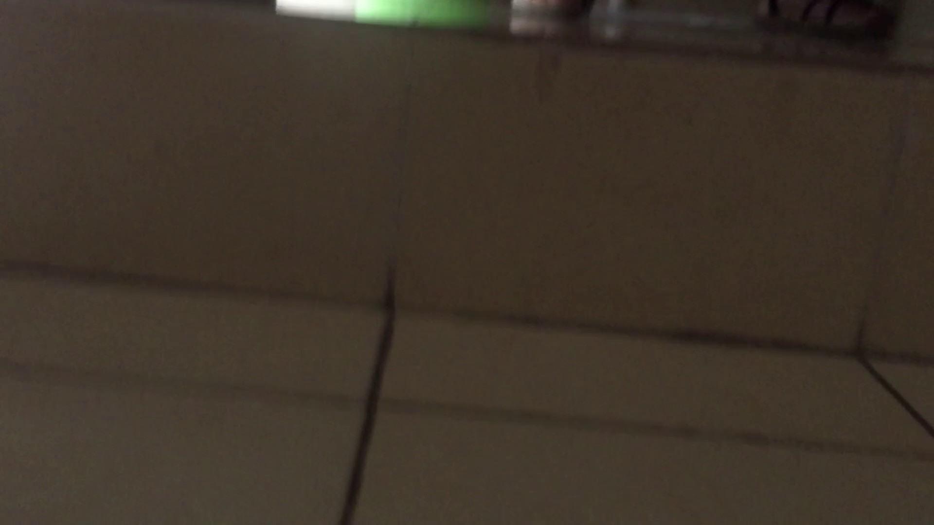 JD盗撮 美女の洗面所の秘密 Vol.73 盗撮映像大放出 おめこ無修正画像 67連発 48