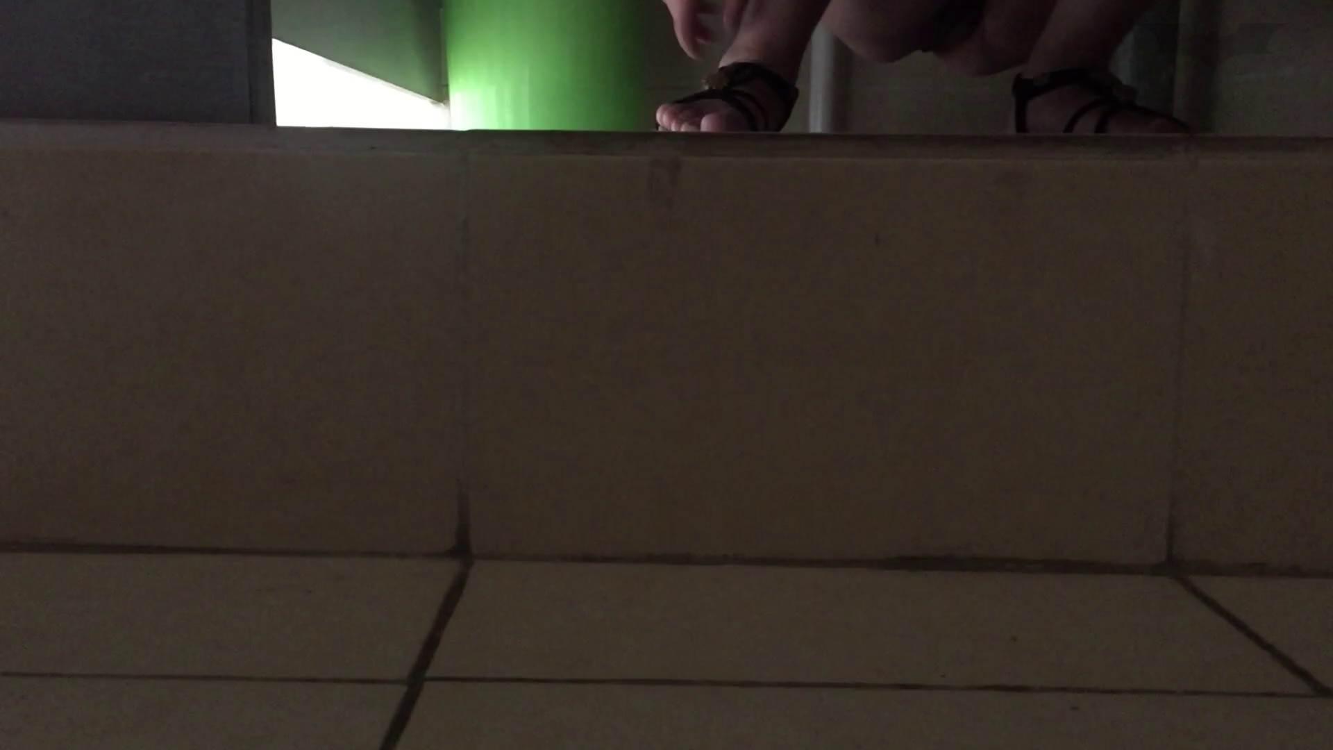 JD盗撮 美女の洗面所の秘密 Vol.73 洗面所 ぱこり動画紹介 67連発 49