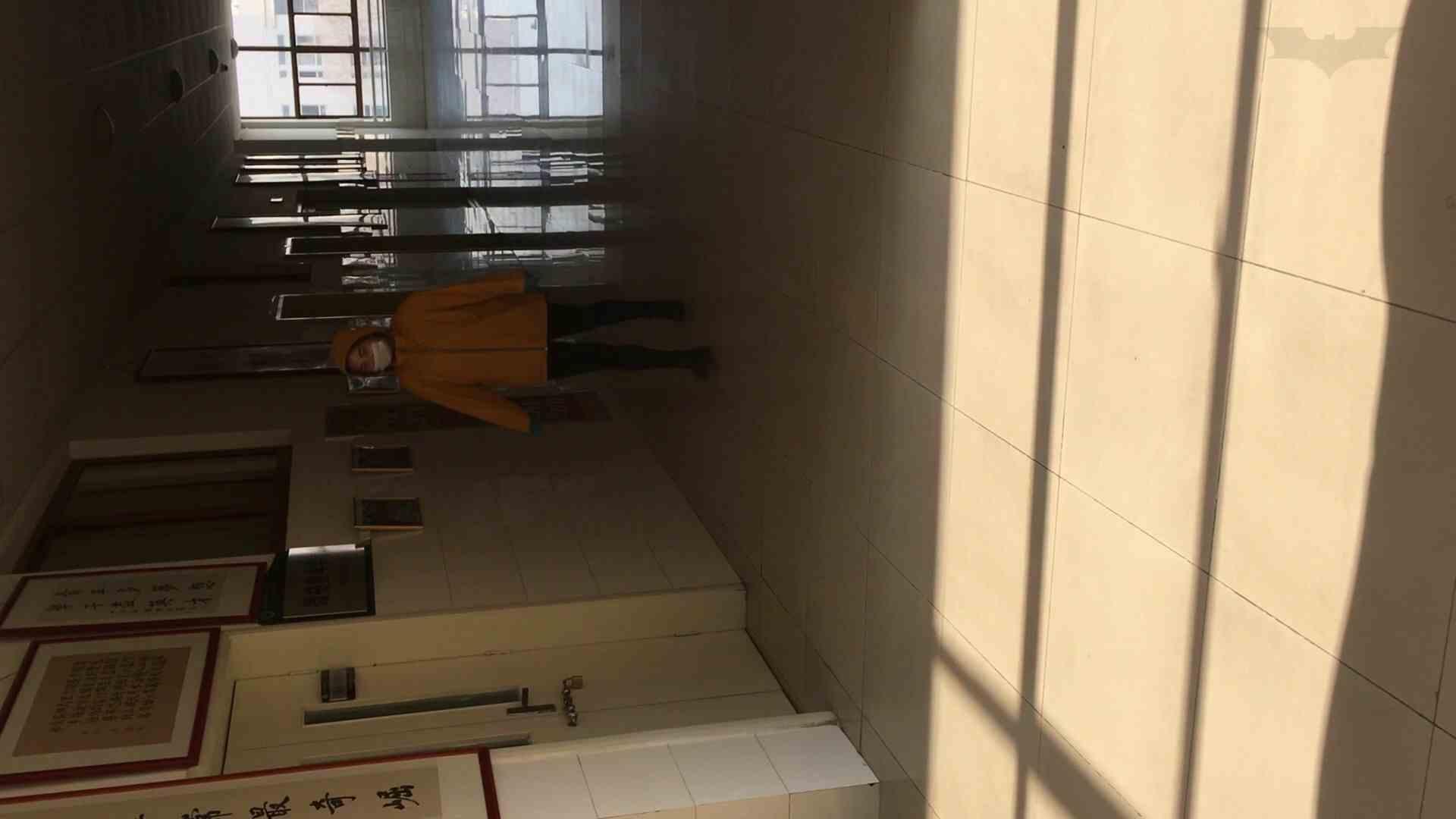 芸術大学ガチ潜入盗撮 JD盗撮 美女の洗面所の秘密 Vol.91 エッチすぎるOL達 AV無料動画キャプチャ 60連発 14
