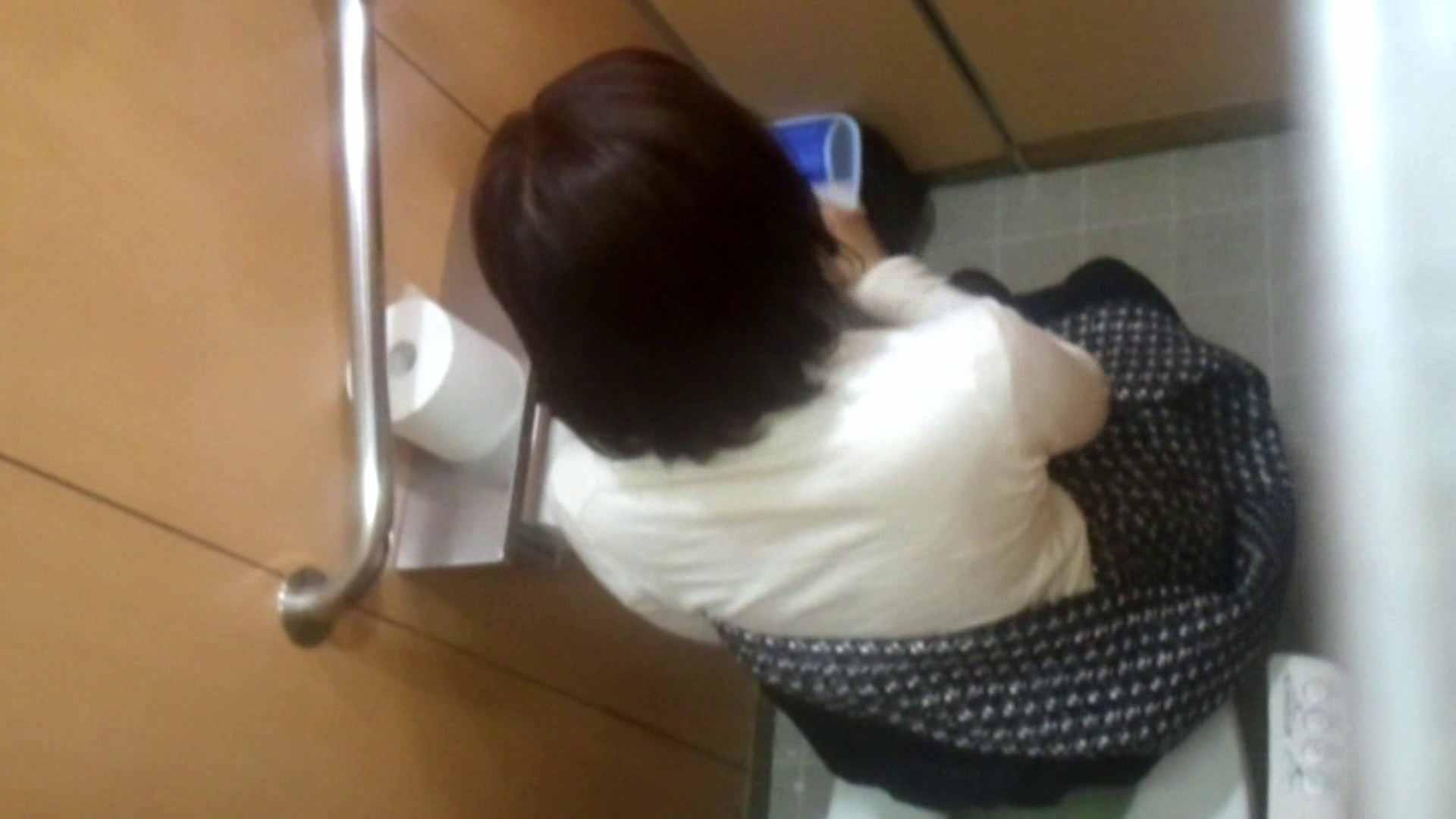 化粧室絵巻 商い場編 VOL.15 エッチすぎるOL達  89連発 4