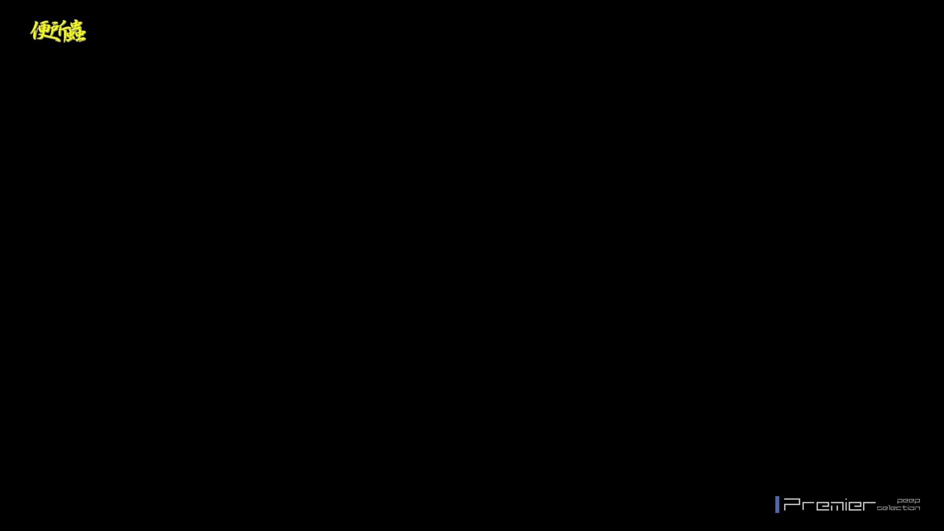 vol.06 便所蟲さんのリターン~寺子屋洗面所盗撮~ 便器  91連発 55