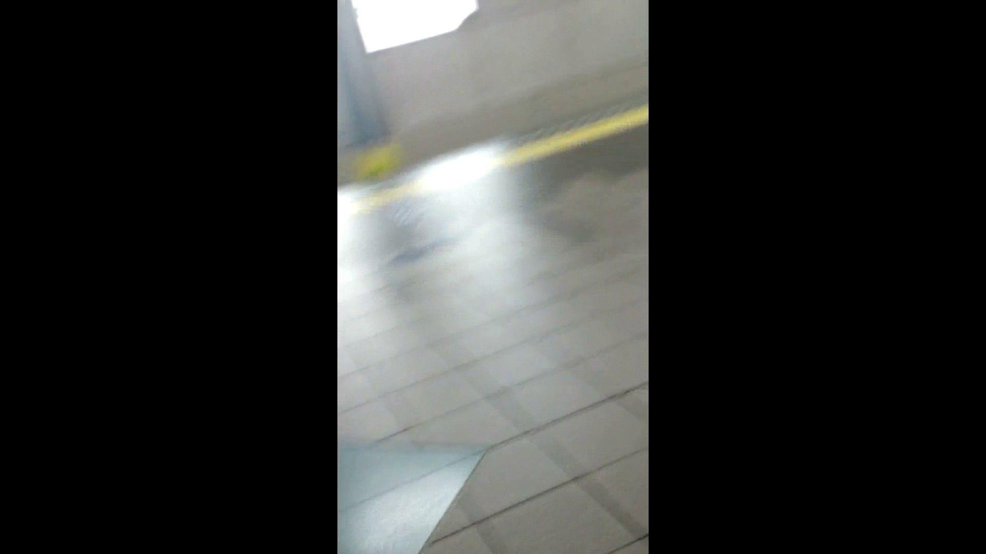 盗撮列車 vol.02 NINJAさんの粘着撮り エッチすぎるOL達 濡れ場動画紹介 34連発 11