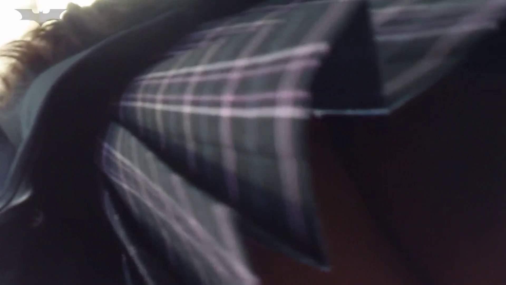 盗撮列車 Vol.14 お嬢様のバックプリントパンツ パンツ  18連発 10