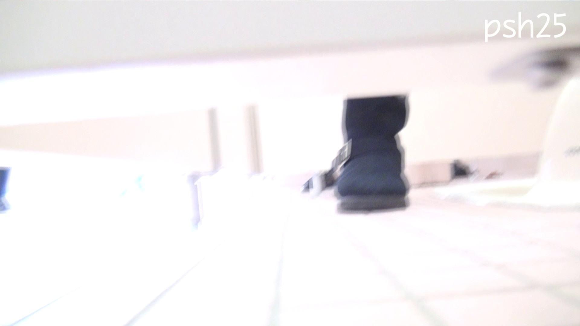 ▲復活限定▲ハイビジョン 盗神伝 Vol.25 盗撮映像大放出   エッチすぎるOL達  106連発 34
