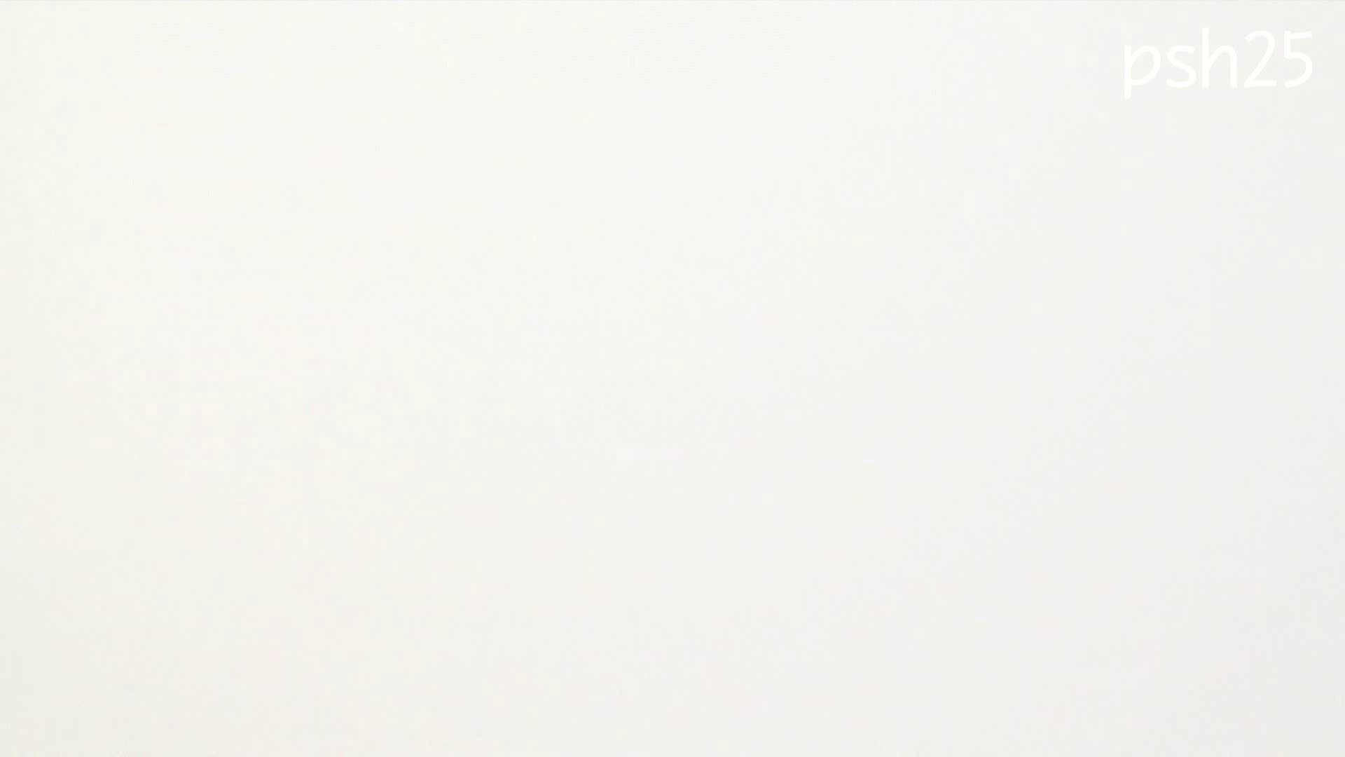 ▲復活限定▲ハイビジョン 盗神伝 Vol.25 盗撮映像大放出  106連発 36