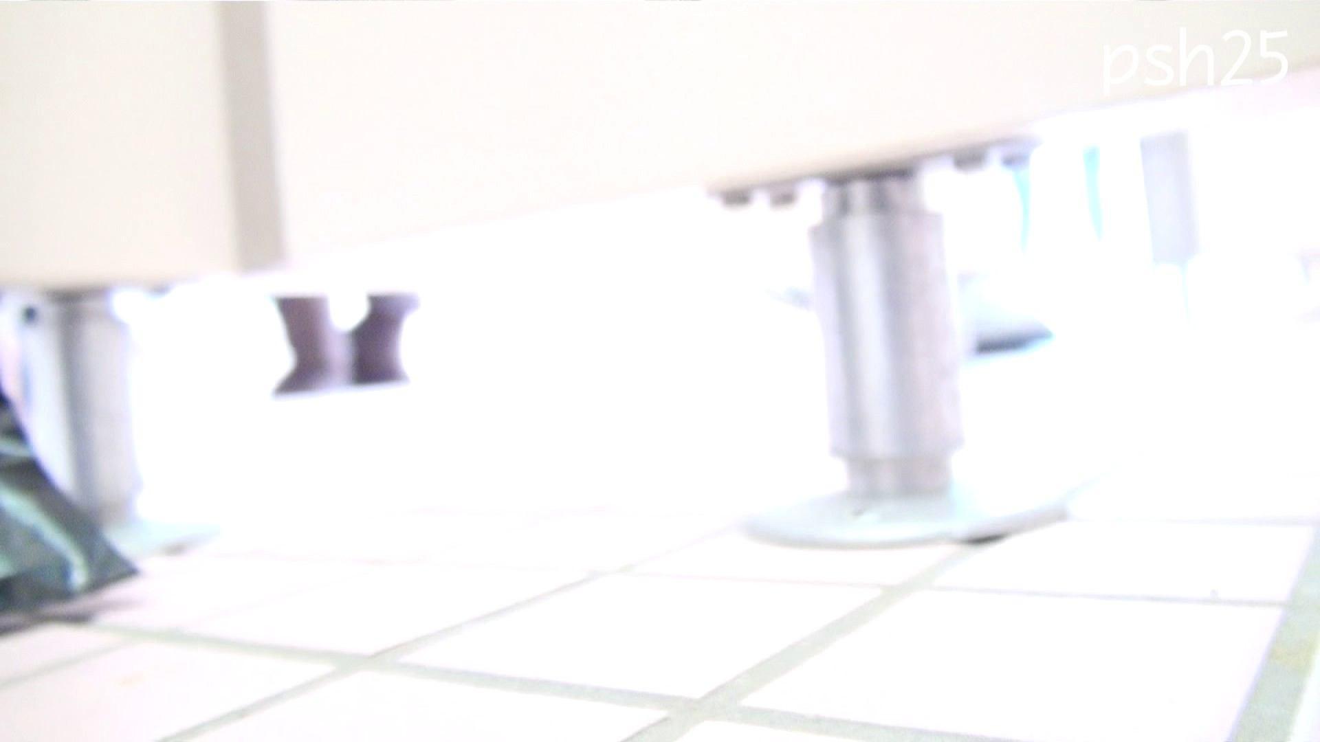 ▲復活限定▲ハイビジョン 盗神伝 Vol.25 盗撮映像大放出   エッチすぎるOL達  106連発 49