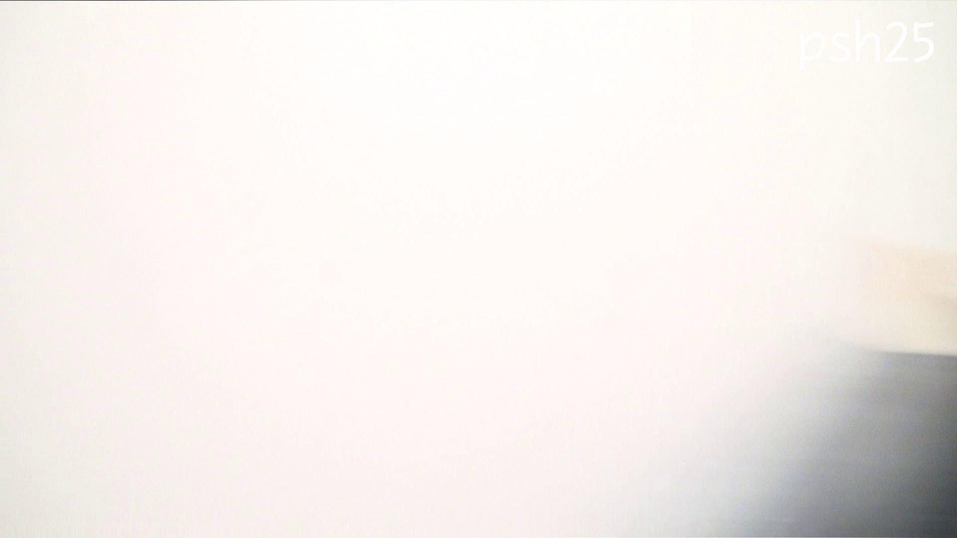 ▲復活限定▲ハイビジョン 盗神伝 Vol.25 洗面所 性交動画流出 106連発 50