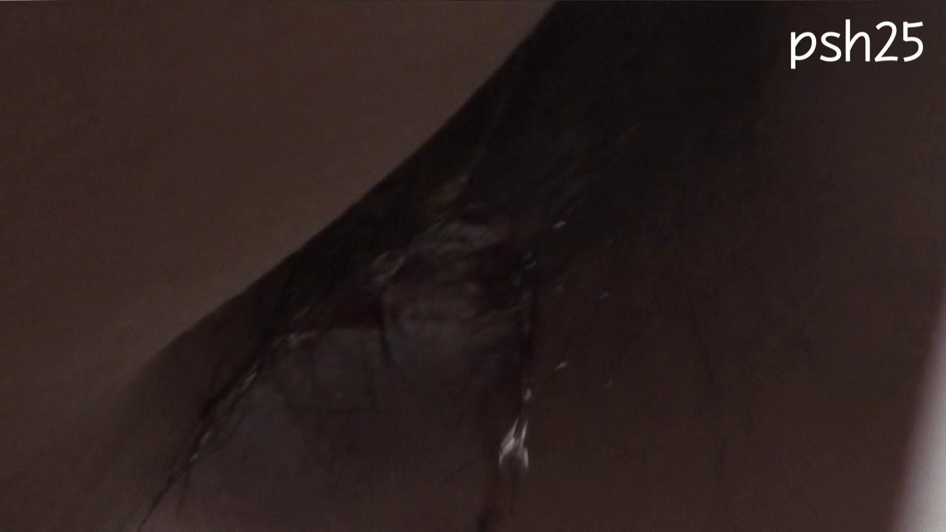 ▲復活限定▲ハイビジョン 盗神伝 Vol.25 盗撮映像大放出  106連発 81