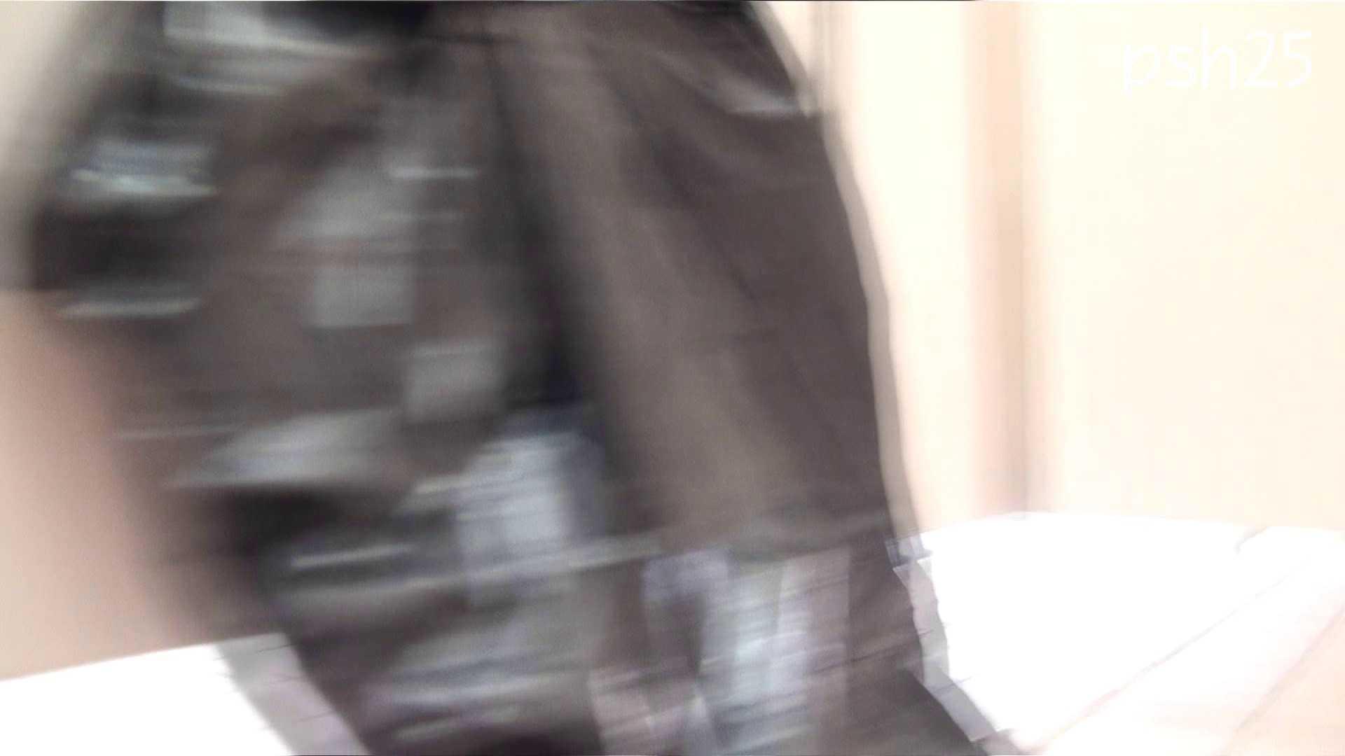 ▲復活限定▲ハイビジョン 盗神伝 Vol.25 盗撮映像大放出  106連発 96
