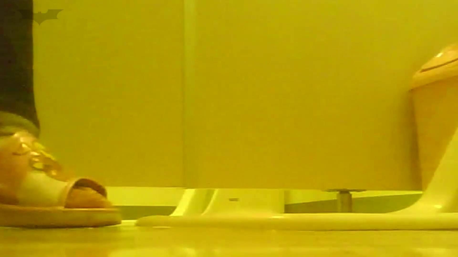 夏の思い出浜辺トイレ盗撮Vol.19 エッチすぎるOL達 盗撮動画紹介 100連発 47