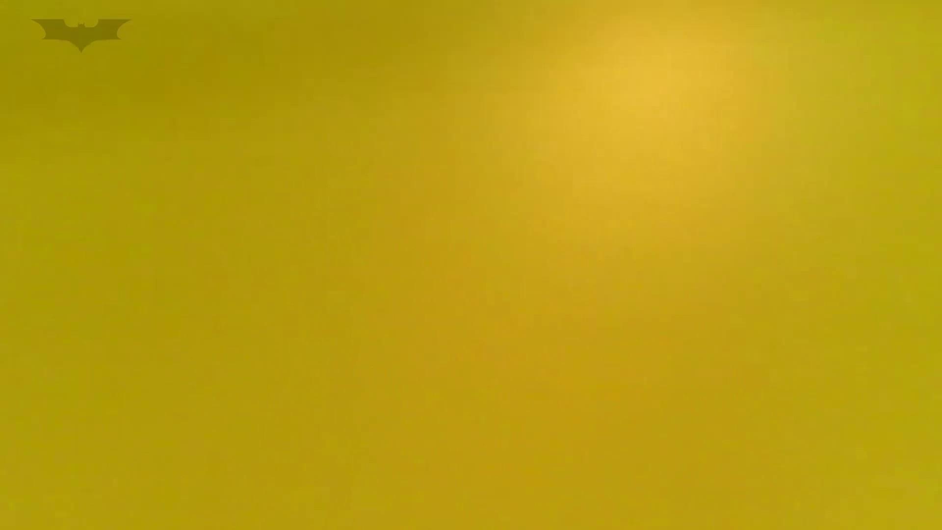 夏の思い出浜辺トイレ盗撮Vol.19 エッチすぎるOL達 盗撮動画紹介 100連発 52