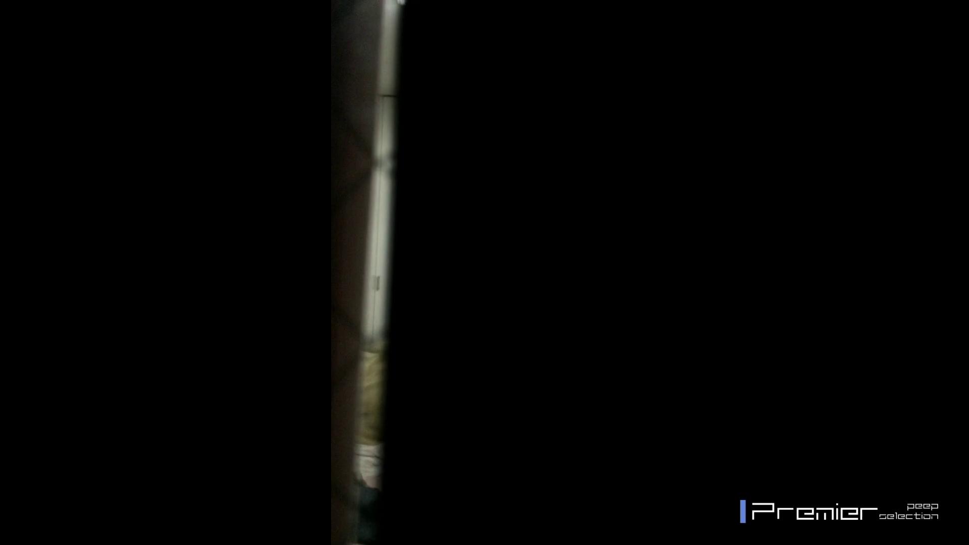 マニア必見!ポチャ達のカーニバル美女達の私生活に潜入! エロくん潜入 スケベ動画紹介 96連発 95