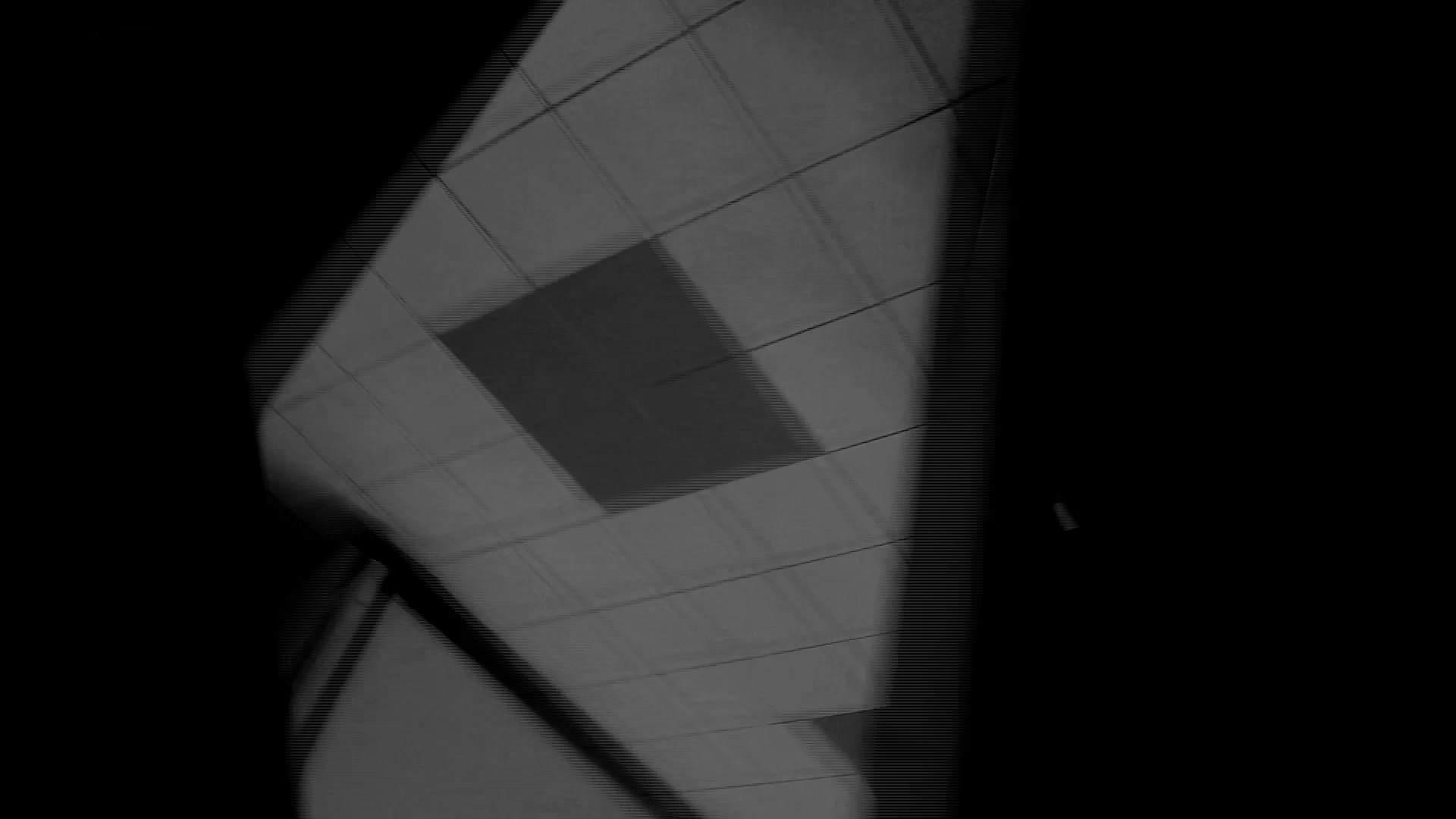 美しい日本の未来 No.29 豹柄サンダルは便秘気味??? 盗撮映像大放出  81連発 40