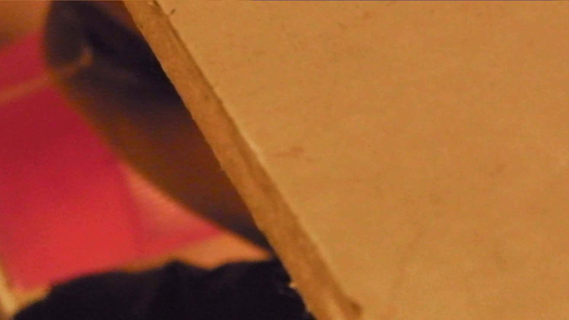おまんこ丸見え:世界の射窓から vol.8:怪盗ジョーカー