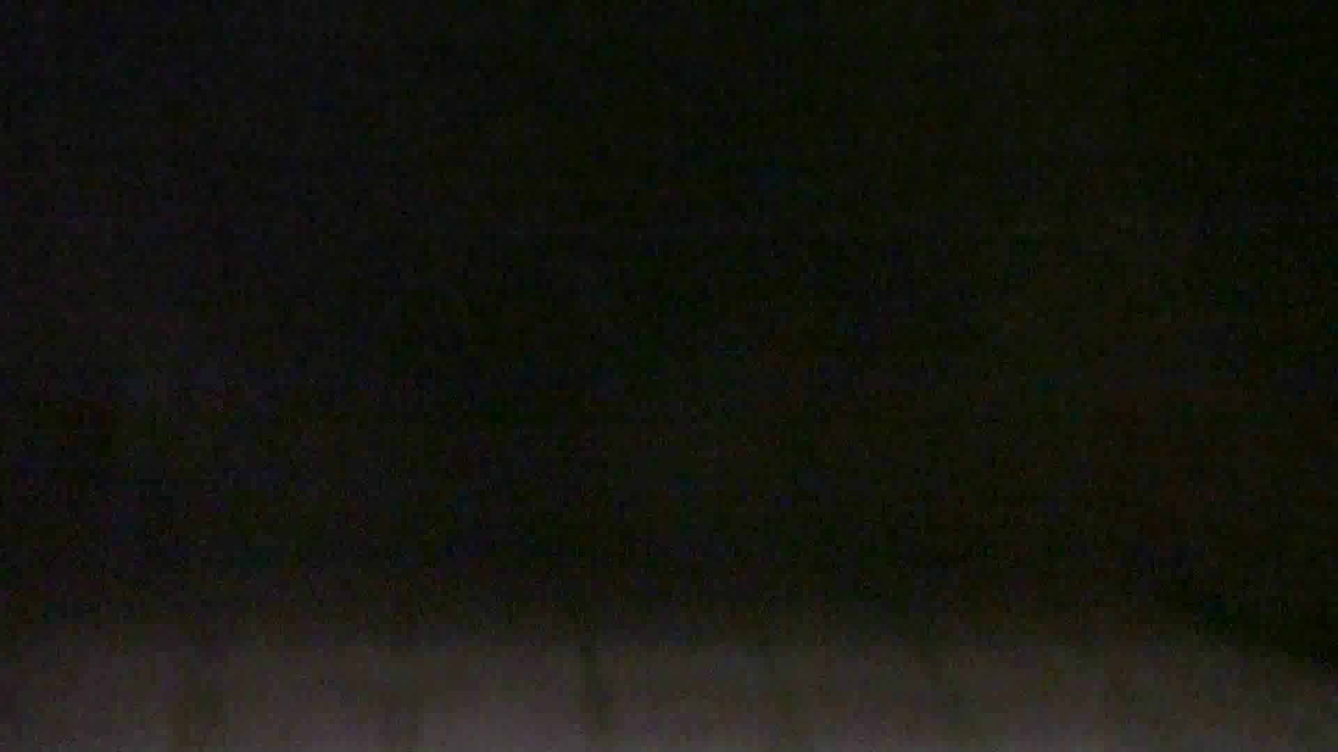 雅さんの独断と偏見で集めた動画集 Vol.9 0 | 0  105連発 19