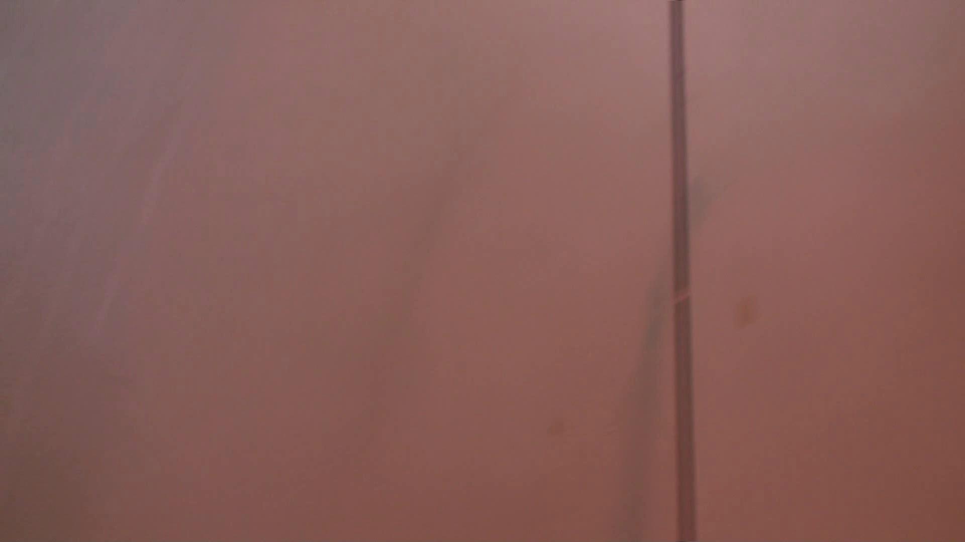 雅さんの独断と偏見で集めた動画集 Vol.9 0 | 0  105連発 27