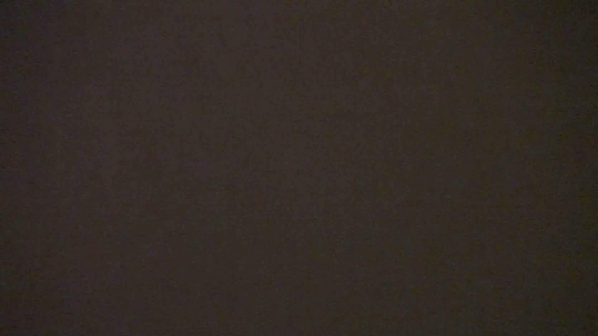 雅さんの独断と偏見で集めた動画集 Vol.9 0 | 0  105連発 93