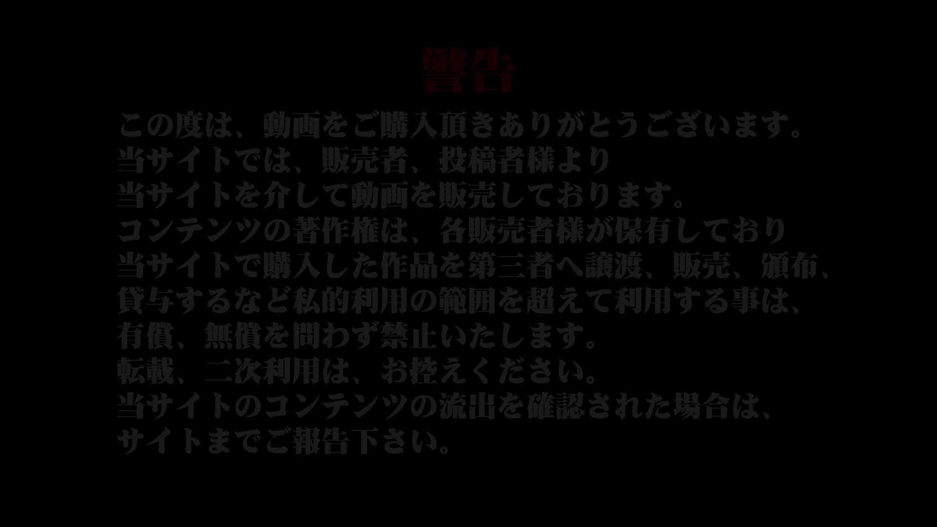 異業種交流会!!キャビンアテンダント編vol.45 0   0  99連発 1