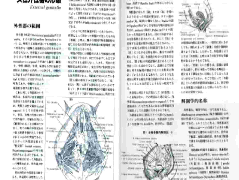 日本女性の外性器① 0  102連発 6