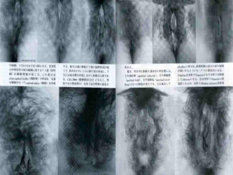 日本女性の外性器① 0  102連発 40