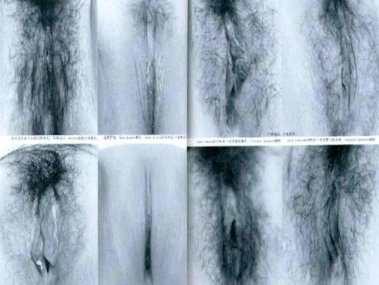 日本女性の外性器① 0  102連発 50