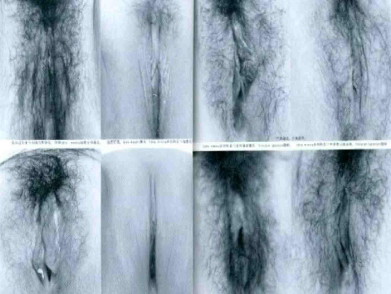 日本女性の外性器① 0 | 0  102連発 51