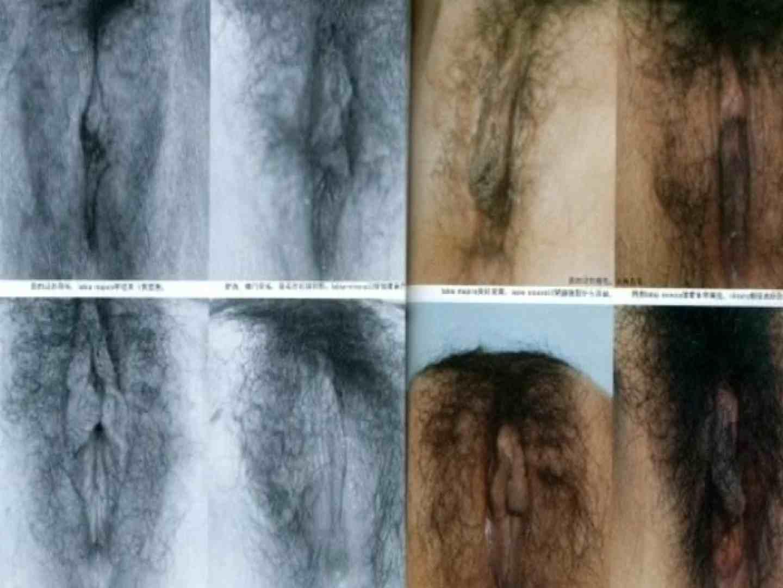 日本女性の外性器① 0  102連発 54