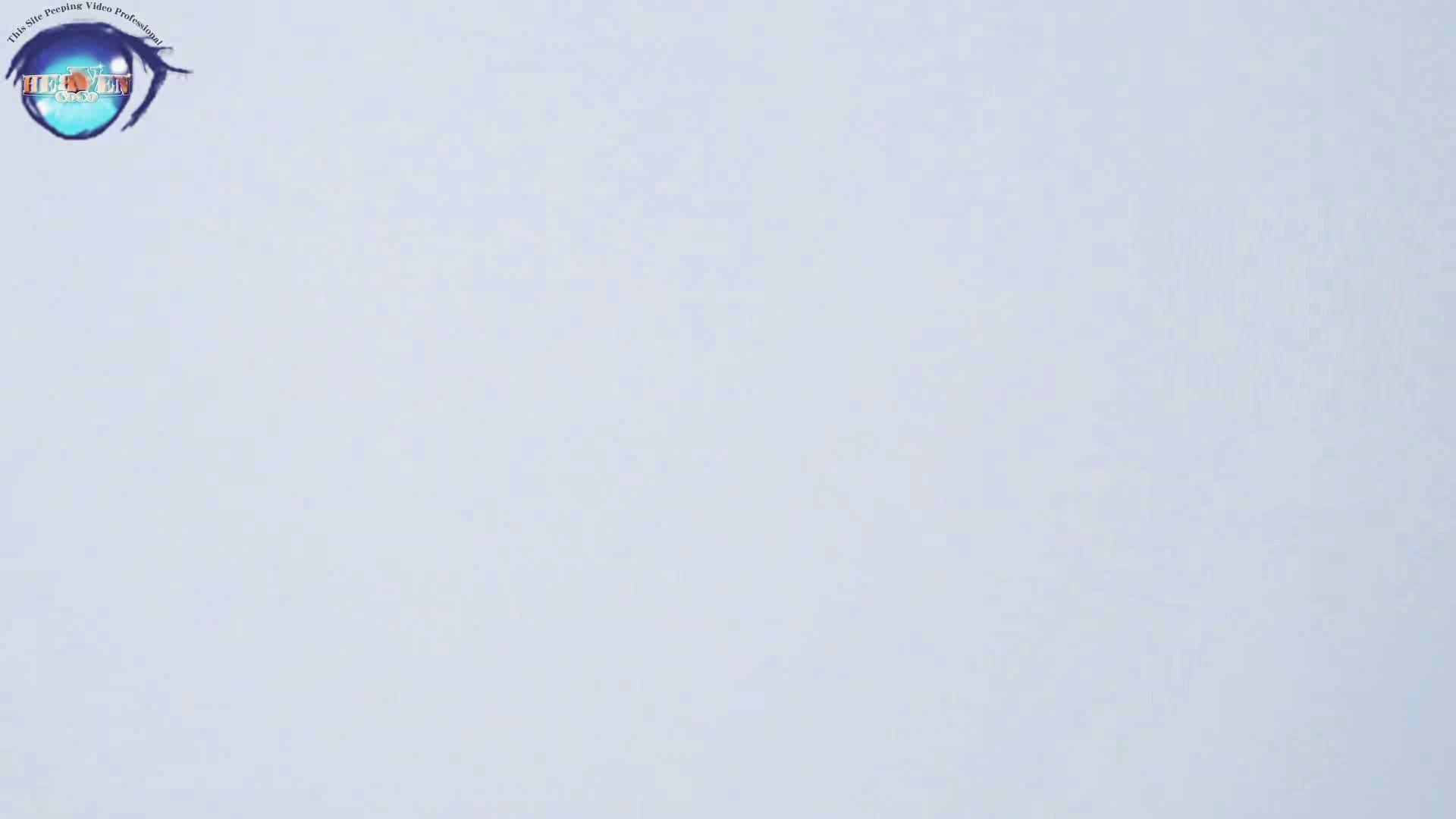 雅さんの独断と偏見で集めた動画集 厠編vol.02 0  69連発 34