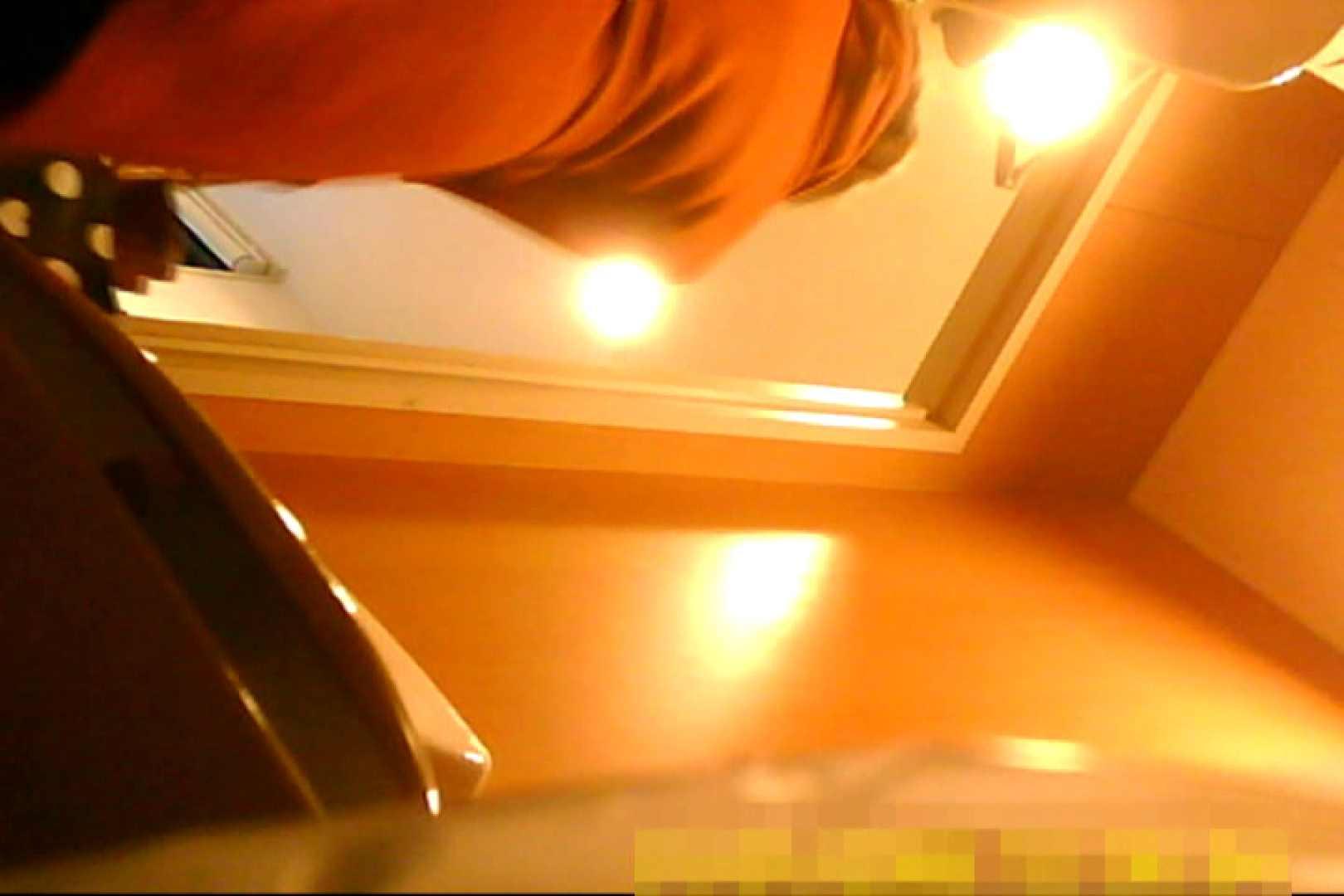 魅惑の化粧室~禁断のプライベート空間~vol.6 チラ 濡れ場動画紹介 69連発 10