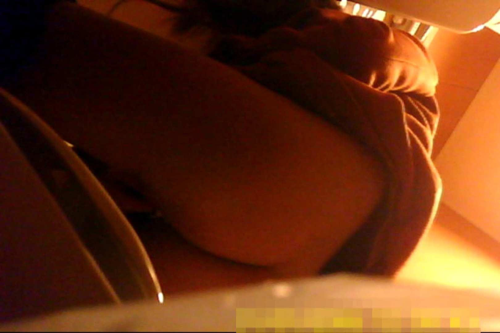 魅惑の化粧室~禁断のプライベート空間~vol.6 チラ 濡れ場動画紹介 69連発 18