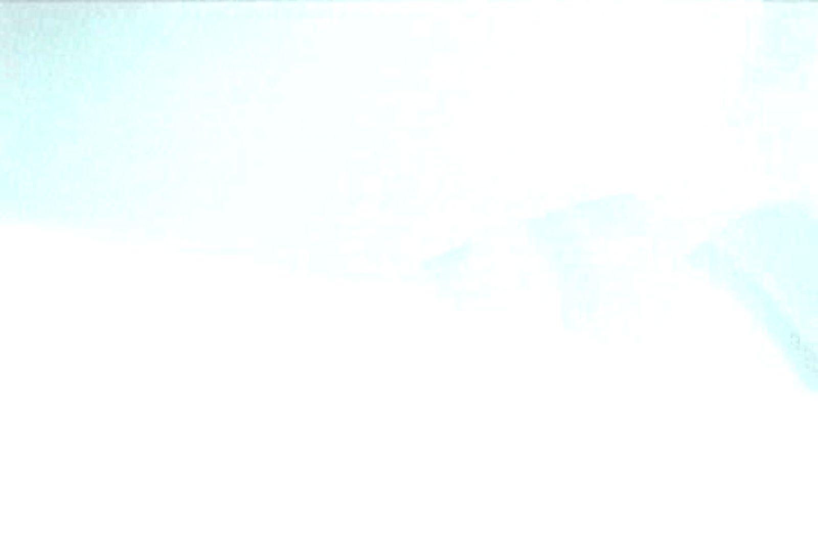 おまんこ丸見え:充血監督の深夜の運動会Vol.88:ピープフォックス(盗撮狐)